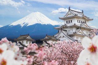 OSAKA – KOBE – KYOTO – PHÚ SĨ – TOKYO | MÙA HOA ANH ĐÀO